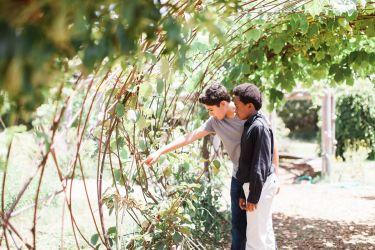 The Edible Schoolyard Garden in Berkeley